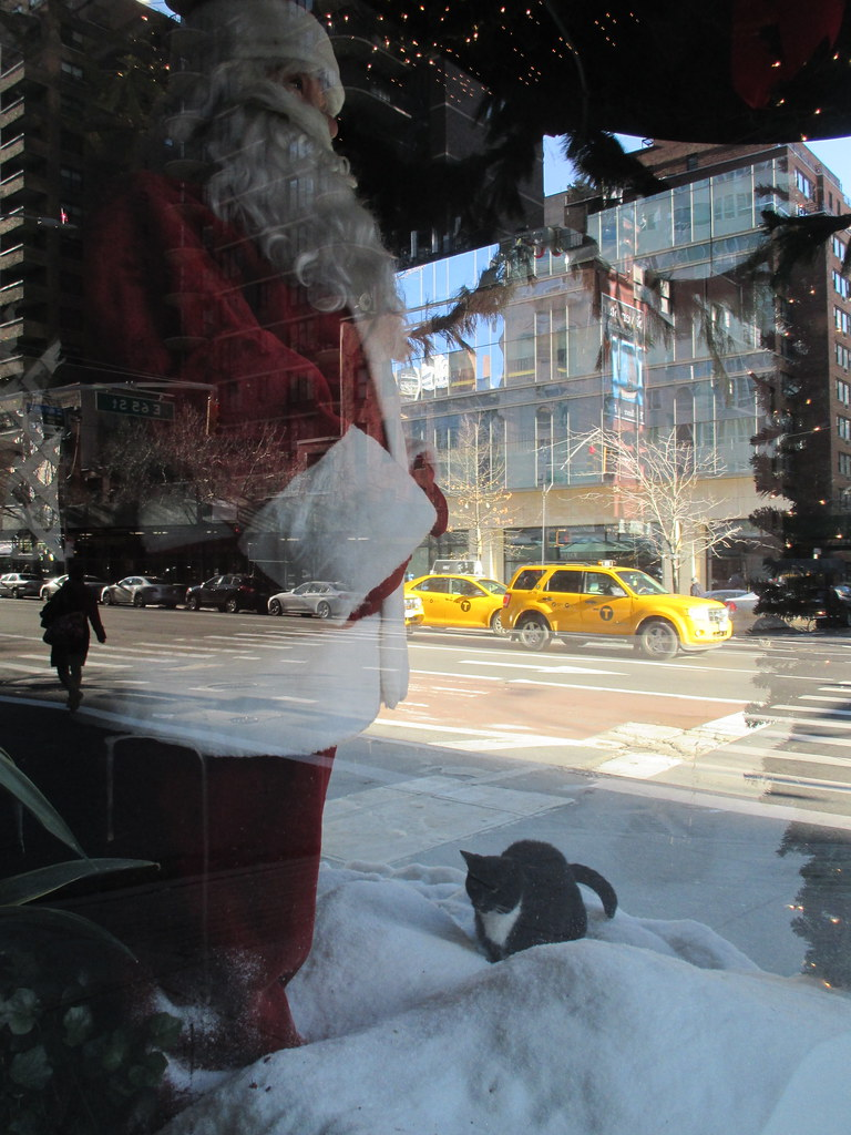The World S Best Photos Of Snow And Trapped Flickr Hive Mind