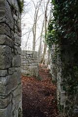 Ruinen (TheoCanon650D) Tags: winter sky water three wasser air bach aachen nrw walls wald garten baum allee kapelle felswand sculpur krnelimnster