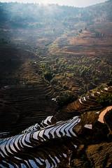 Honghe County  Bao Hua Xiang Terraced Field [Explored] () Tags: china daylight yunnan   terracedfield     honghecounty baohuaxiangterracedfie