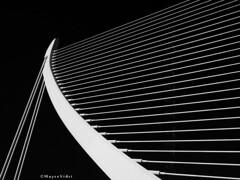 ARPA - HARP B&W (MayteVidri (busy / ocupada)) Tags: españa valencia lines architecture spain arquitectura olympus calatrava cac harp curve arpa santiagocalatrava omd lineas curva ciudaddelasartesylasciencias em1 valència isma cacvalencia 1240 dedicada ciutatdelesartsilesciències 1240mm maytevidri sleeky2007 micro43 microfourthirds microcuatrotercios pontdelassutdelor olympusem1 20150105 p1057132 em1omdmicro olympusm1240mm puenteazuddeloro bridgeassutdelor