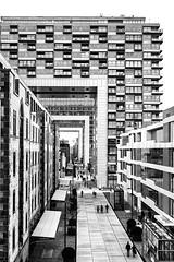 Rheinauhafen (gambajo) Tags: city urban blackandwhite architecture deutschland blackwhite köln architektur orte kranhäuser rheinauhaufen