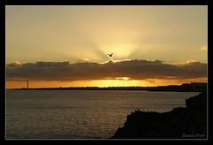 Playa Blanca (Zsuzsa Por) Tags: sunset sky espaa cloud lighthouse bird faro mar spain agua lanzarote playa paisaje canarias cielo 2470l nube ef2470mmf28lusm anochecer oceno canonistas canoneos7d