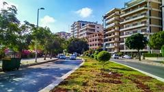 _  (nesreensahi) Tags:    latakia syria syrie siria street sky sun roses nature landscape plants houses buildings cars flowers park garden