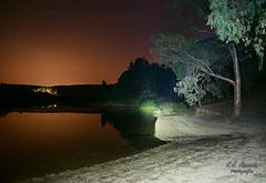 _DSC4860 (kunkache) Tags: nocturnas paisajes fauna