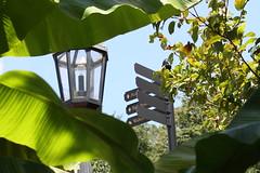 Biltmore Estate garden, Asheville, NC (neil.gilmour) Tags: biltmore asheville north carolina garden estate sign lamp green