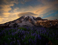 Lenticular Majesty (JohanEickmeyer) Tags: rainier lenticular cloud wildflowers lupine paintbrush night stars