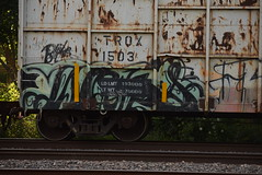 WEBS (TheGraffitiHunters) Tags: street art car dumpster train graffiti colorful paint tracks spray graff freight webs benched benching