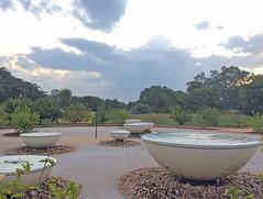 matrimandir_gdns_7062 (Manohar_Auroville) Tags: auroville matrimandir gardens beauty paradise spirituality india tamil nadu manohar luigi fedele