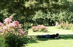 L'amour dans le parc Bagatelle (checiotola) Tags: parco paris lovers parc parigi amoureux bagatelle innamorati