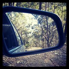 Mogo State Forrest 2 (Lisbeth Westra) Tags: mogo mogostateforrest nsw forrest bush australianbush refelection mirror mobile htc