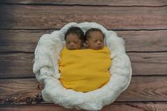2016_ 07_04 Garrett Twins21 (astridmthomson) Tags: astridthomsonphotography madison newbornphotography twinboys verona wisconsin