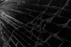 broken glass (alejandro krok) Tags: glass broken broke brake vidrio roto trash