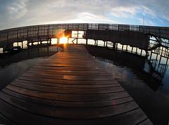 P7231149new (klausen hald) Tags: summer sommer københavn copenhagen denmark danmark amager amagerstrandpark beach sea kastrupsøbad sneglen