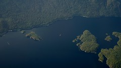 Going coastal in Tofino (planted city) Tags: vancouver tofino vancouverisland topdown birdseyeview airplane window landscape nature blue green