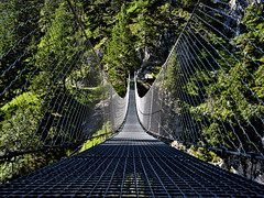 Rope Bridge - Hngebrcke (W_von_S) Tags: ropebridge hngebrcke leitersteig trail steig karwendel mittenwald alpen alps schlucht gorge drahtseil rope steel stahl schwingen swinging august summer sommer 2016 berge mountains perspektive leiter ladder sony alpha7rm2 wvons werner outdoor wow