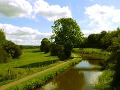 Year 2 August Caldon Canal (Alan FEO2) Tags: canal water sky clouds caldoncanal stokeontrent reflection trees grass path 12monthsofthesameimage 12 months same image year 2 staffordshire uk towpath footpath image7 august outdoors panasonic dmc g1 2oef
