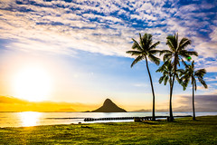 Sunrise at Chinaman's Hat (lisame0511) Tags: sunrise oceansunrise beachsunrise palmtreesunrise palmtree islands ocean sea hawaii beach haleiwa aloha rocks cloud sand sun wave sky oahu shorebreak hawaiian hawaiiansunset chinamanshat chinamanshatsunrise unitedstatesofamerica