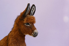 Donkey_4 (kdc123) Tags: donkey furred breyer custom ooak chestnut miniature