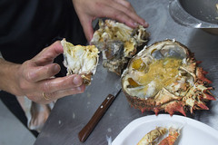 Restaurante Saltxipi (Yoana SS) Tags: saltxipi gros cocina cocinar gastronomia comida almejas hongos parrilla besugo maricos marisco mariscos