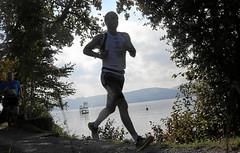 Hallwilerseelauf: Halbmarathon durch durch eine faszinierende Naturlandschaft