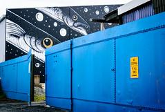 20161025-STM_0237.jpg (mellator) Tags: dunedin street art graffiti fish nikon streetart industrial regeneration toothfish noparking wall bluefence dunedinnz