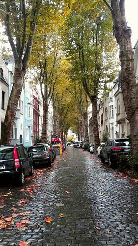 Herbst Farben