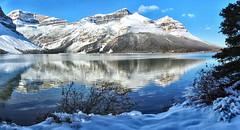 Bow Lake, Banff National Park, Alberta, Canada - ICE(5)1160-1170 (photos by Bob V) Tags: banff banffpark banffnationalpark banffalberta banffalbertacanada mountains rockies rockymountains canadianrockies mountainlake panorama mountainpanorama reflection reflectiononwater snow snowscene