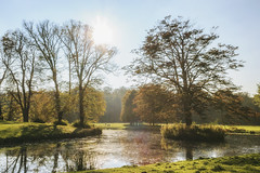 Elswout (Thomas Rotte) Tags: elswout overveen netherlands landgoed mansion tree trees water sun sunset dawn dusk morning evening sunrise lake river nature green fall winter