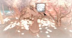 My Breath of Life (Jade Samsara) Tags: snow art sl fantasy secondlife crow gown wicca wiccaswardrobe fantasycollective mattierae