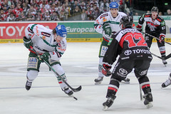 """DEL15 Kšlner Haie vs. Augsburg Panthers • <a style=""""font-size:0.8em;"""" href=""""http://www.flickr.com/photos/64442770@N03/15679871654/"""" target=""""_blank"""">View on Flickr</a>"""