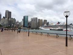 Sydney Harbor facing the city!