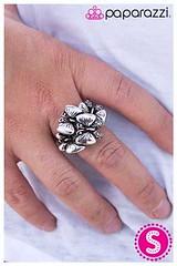 224_ring-silverkit1may-box05