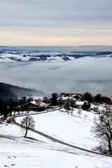 Blick ins Nebeltal (Kraqueboom) Tags: schnee winter st fog nebel view foggy grau blau ulrich landschaft obersterreich tal ausblick steyr damberg nebeltal