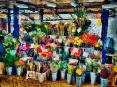 The Flower Stall (leigh-kemp.pixels.com) Tags: painterly hdr flowerstall omd em5 omdem5 mzuiko17mm118lens
