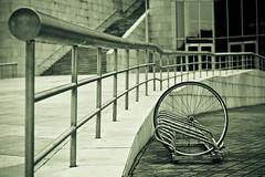 Shelly (Xavier Roeseler) Tags: monochrome bike wheel digital vintage camino bilbao theft plonker 50mmf18 shitlock fictionalnarrative