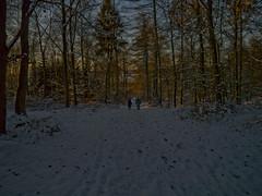 (martin_rees) Tags: winter snow forest germany walkers boppard rheinlandpfalz buchholz hunsrück kratzenburg fuchsweg