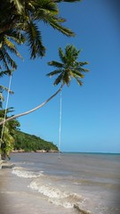 Columpios (Alveart) Tags: colombia playa verano latinoamerica isla caribe providencia sanandresyprovidencia alveart luisalveart providenciaysantacatalina