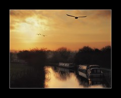 Leeds-Liverpool canal (tkimages2011) Tags: sunset bird water liverpool boat canal swan leeds canalboat wigan