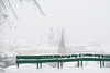 Snow | Kaunas #21/365 (A. Aleksandravičius) Tags: winter white snow color oneaday nikon day photoaday 365 135 nikkor lithuania pictureaday 135mm kaunas lietuva 2015 project365 365days 21365 dayphoto daypicture nikon135mm d700 nikkor135 nikond700 nikon135mmf2dc 365one nikon135f2 nikonafdcnikkor135mmf2d 3652015