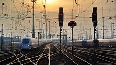 homesick (micagoto) Tags: ice train frankfurt zug db signal intercityexpress
