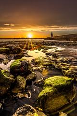 Sunset over Hartlepool (P Fletcher) Tags: sunset sea cloud lighthouse seaweed pool clouds port pier moss sand rocks sundown harbour dusk cleveland overcast northsea lensflare flare prock teesside headland rockpools hartlepool seacoal pilotspier oldpilotspier