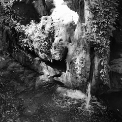 every drop that flows becomes part of the lager body (Star, LaikazEyes: zazzle.com/mbr/23801218132) Tags: bw water leaves rock river square mexico waterfall queretaro ravine mx sierragorda qro dsc1246 puentededios pinaldeamoles escanelariver laikazeyes