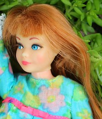 Mod Era Skipper in Posy Party (tamsykens1) Tags: family mod bend leg barbie skipper era oll