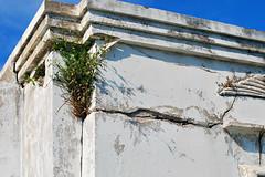 Key West (Florida) Trip, November 2014 0183Ri 4x6 (edgarandron - Busy!) Tags: cemeteries cemetery grave keys florida graves keywest floridakeys keywestcemetery