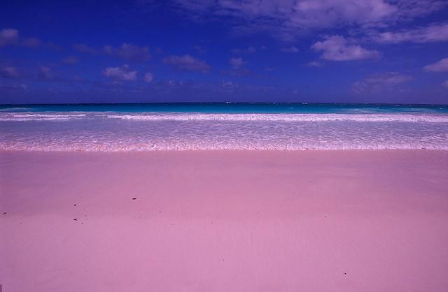1410019878527_wps_10_BH2GGE_Pink_Sand_Beach_Ha