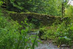 Forgotten Bridge (foggybummer (Keith)) Tags: old bridge green stone burn vegetation mossy denofdun