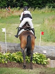 P1270747 (serita.vossen) Tags: horse horses eventing cross jumping paarden emmeloord ruiters amazones
