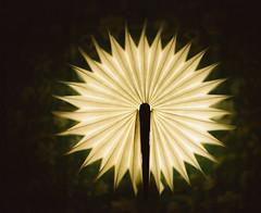 book lamp (C.Kunta) Tags: 6x7 120  iso80 kodakppn160 pentax67ii slr lamp