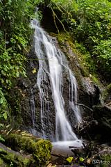 Catarata Las Bromelias (ingbalfaro) Tags: catarata sangerardo quetzallodge sangerardodedota nd paraisoquetzalcom cerrodelamuerte