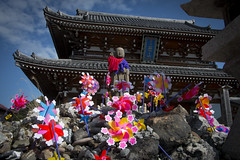 0208 (Shota Fukuda) Tags: japan    temple